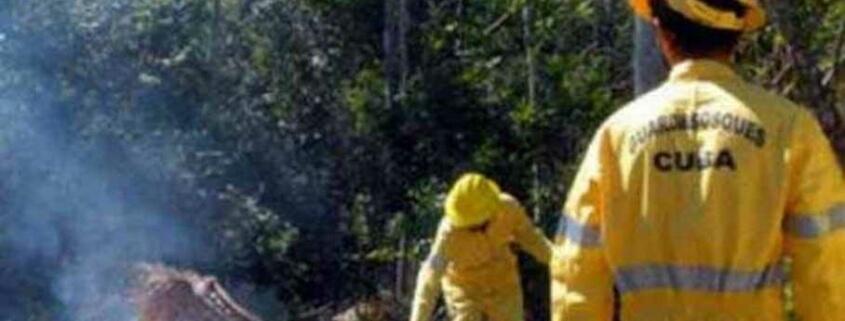 Cuba se recupera del mayor incendio forestal en 2021
