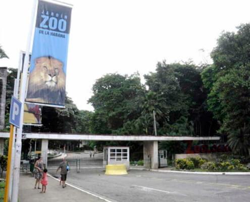 Nacen nuevas crías en el Jardin Zoológico de 26 en La Habana