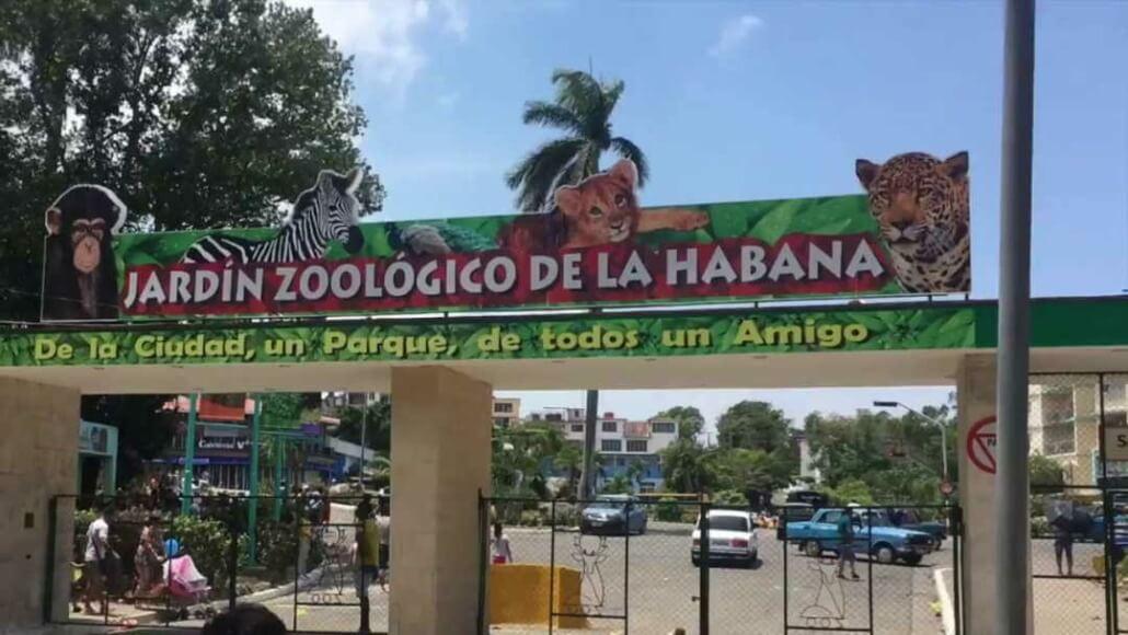 Reabrirán sus puertas Jardín Zoológico de La Habana